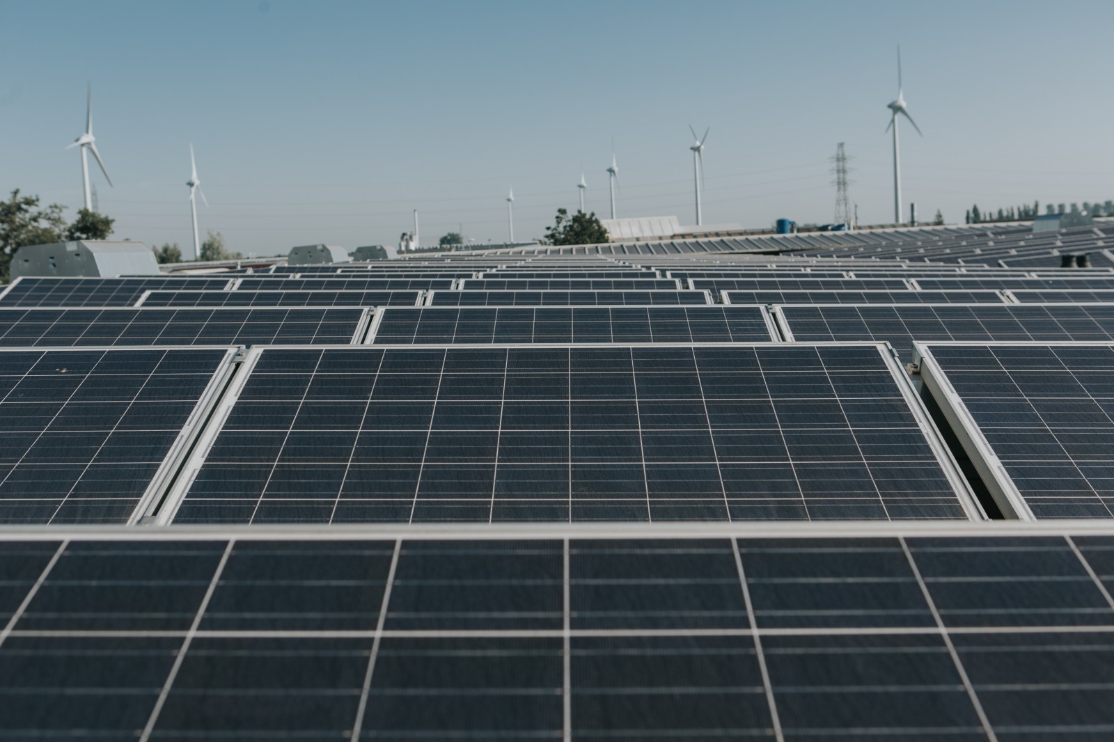 zonnepalen op daken Westlandia